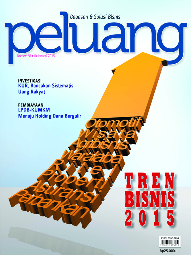 cover jan 2015